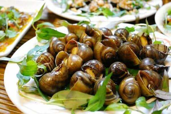 Snails-and-shellfish-1